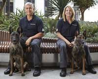 SGI K-9 Program, Cedars Sinai